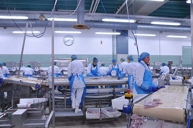 food processing operation