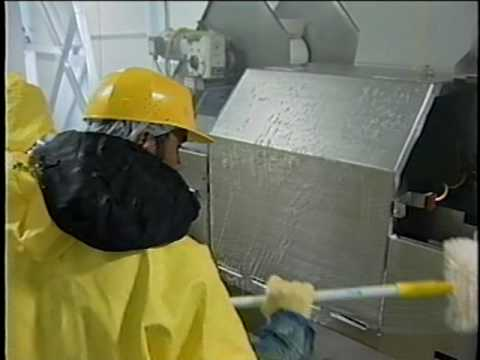 cleaning in food  processing